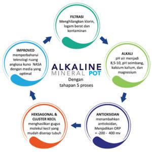 antioksidan dlm air alkali